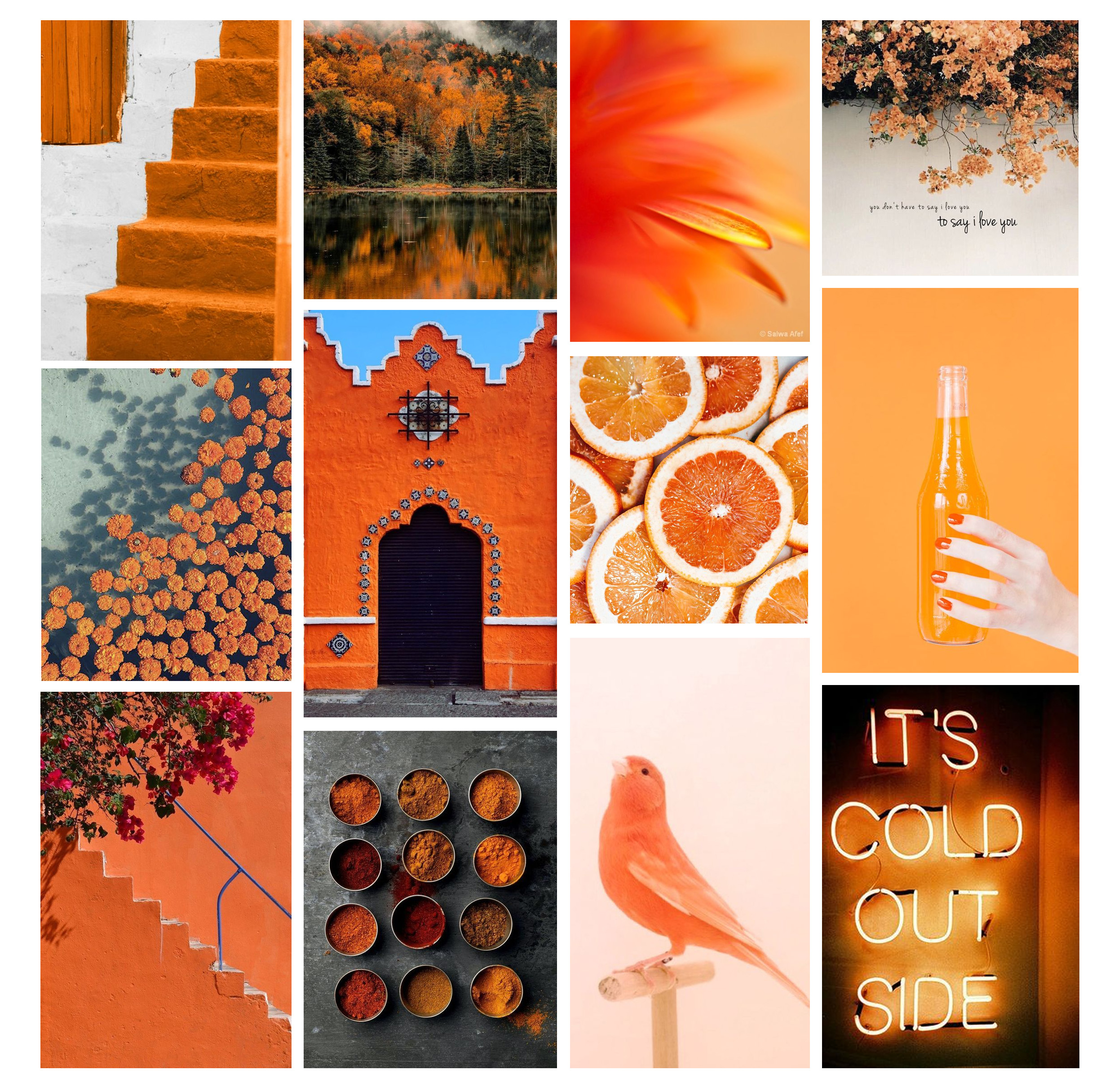 Psychologie des couleurs : le orange