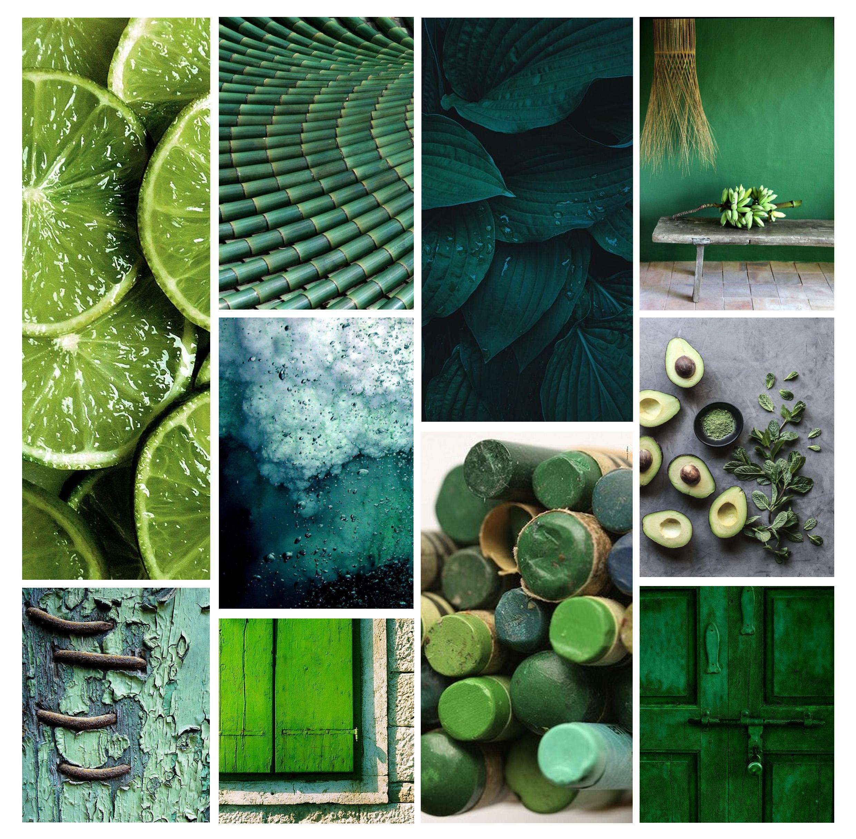Psychologie des couleurs : le vert